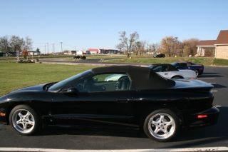 1998 Pontiac Firebird Ta,  Convertible photo