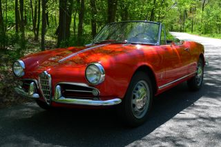 1960 Alfa Romeo Giulietta Spider photo