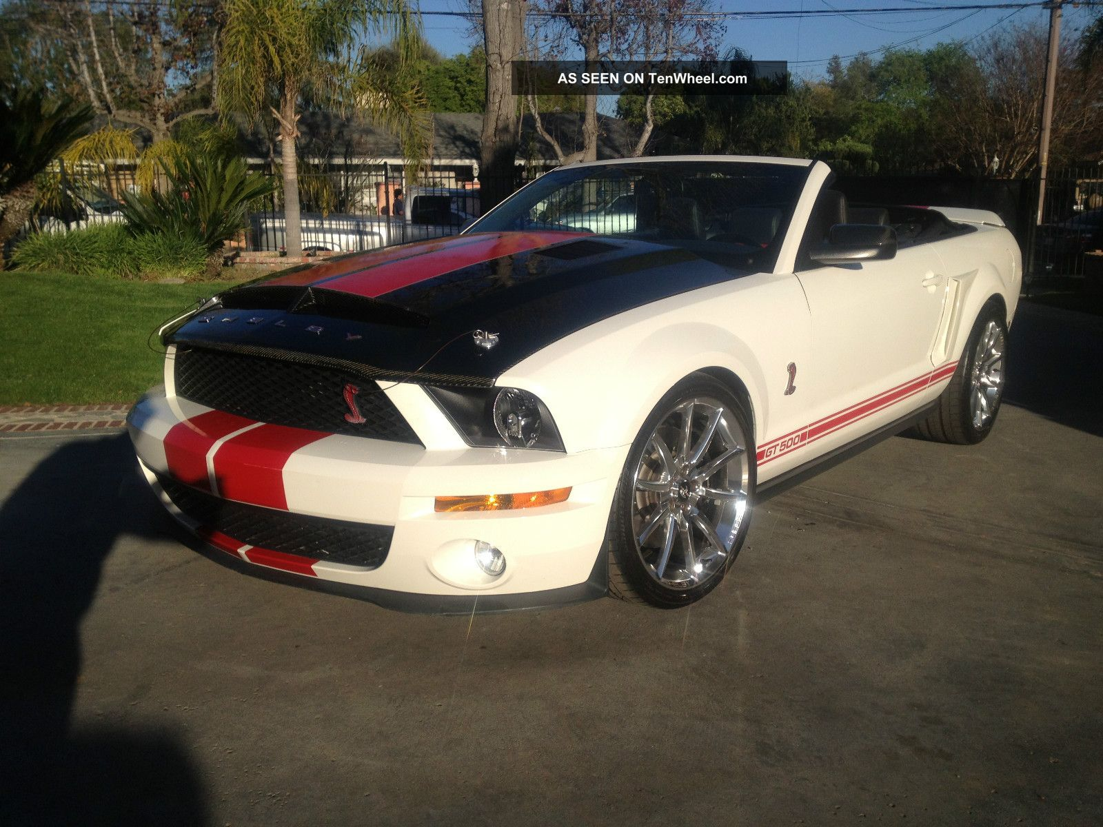 2008 Shelby Gt500 Convertible,  Identical To Kr Snake,  850 Rwhp Shelby photo