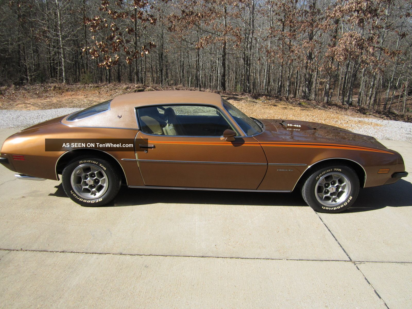 1974 Pontiac Firebird Formula Duty Firebird photo
