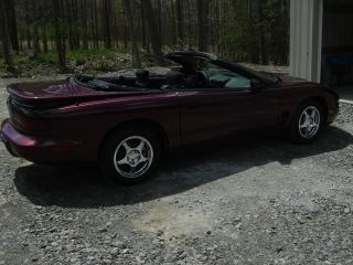 2002 Pontiac Firebird Base Convertible 2 - Door 3.  8l photo