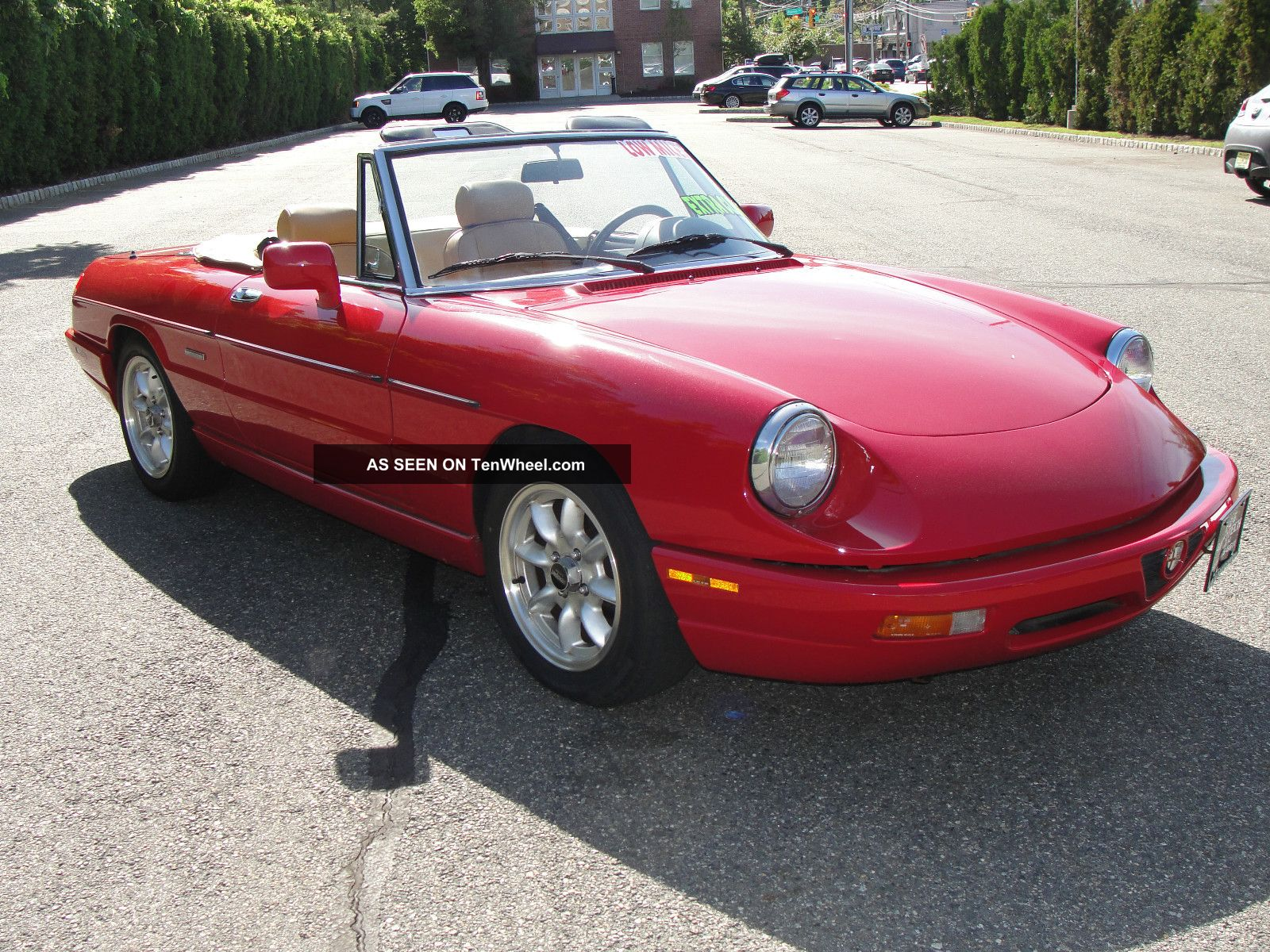 1991 Alfa Romeo Spider Veloce - Viewing Gallery