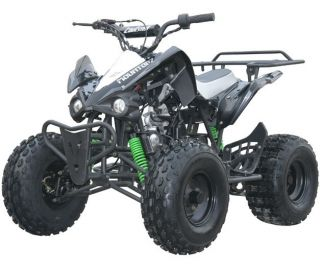 Powersports atvs other makes web museum for Atv yamaha raptor 125cc