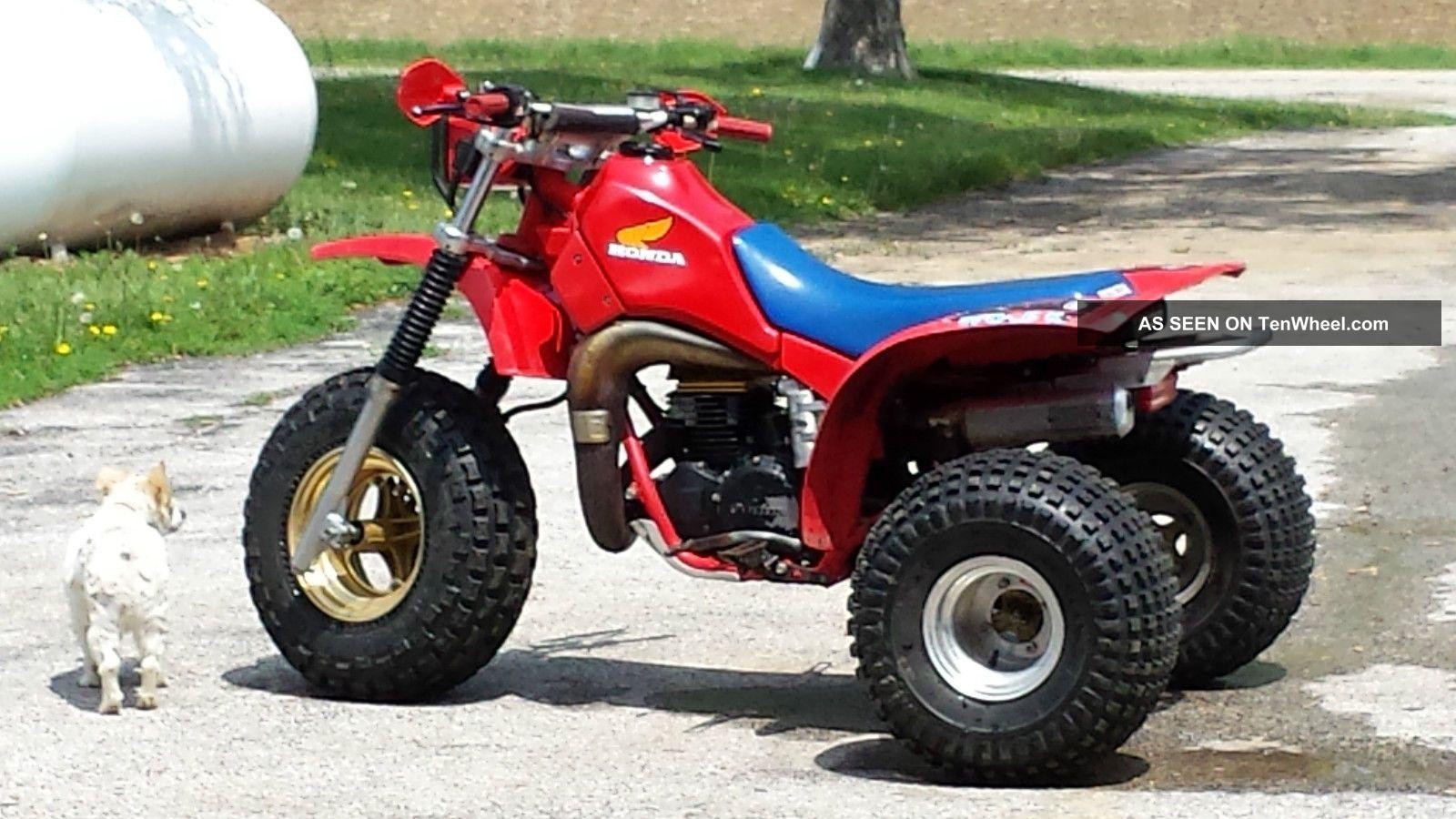 1984 Honda Atc Honda photo