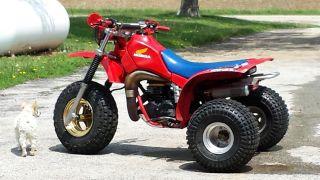 1984 Honda Atc photo