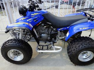 2004 Yamaha Warrior 350 photo