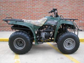 2002 Yamaha Bear Tracker photo