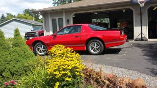 1986 Trans Am Firebird photo