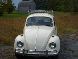 1967 Vw Beetle photo