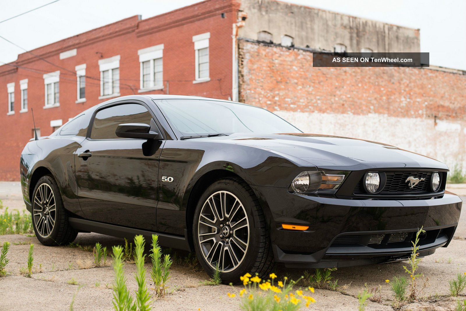 2012 ford mustang gt 5 0 premium coupe 6 speed manual black. Black Bedroom Furniture Sets. Home Design Ideas