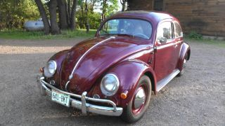 Volkswagen Beetle 1957 photo