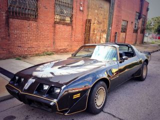 1980 Pontiac Firebird Turbo Trans Am Bandit Edition T - Tops 4.  9l V8 photo