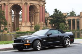 2007 Shelby Gt500 Snake Convertible photo