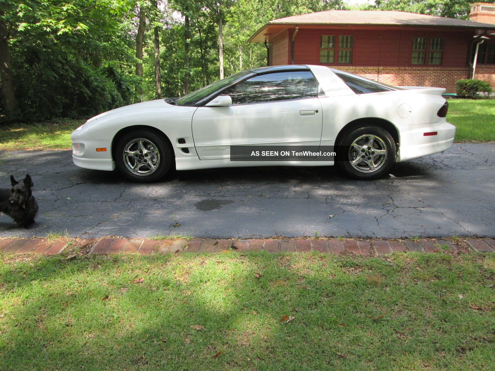 2000 Pontiac Firebird Base Coupe 2