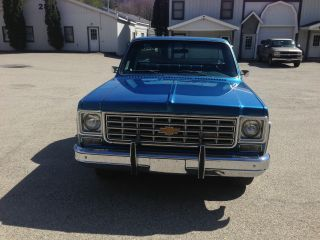 1976 Chevy Pick - Up C10 Unrestored Survived photo