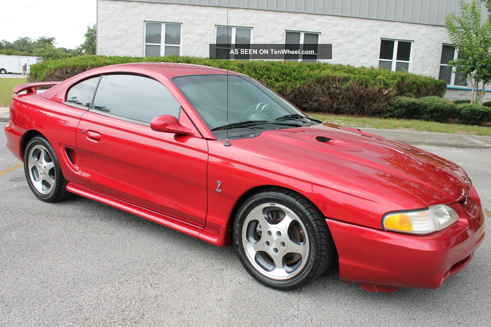 1996 Ford Mustang Svt Cobra - Red / Tan - Garaged - Fla - Kept - Lowest Mileage In The Usa