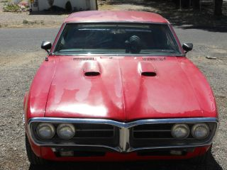 1967 Pontiac Firebird 455 photo