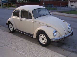 Great 1969 Vw Bug photo