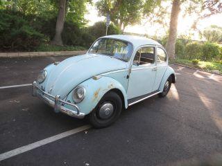 Classic Vw Beetle Bug Bahama Blue Coupe 1966 Classic photo