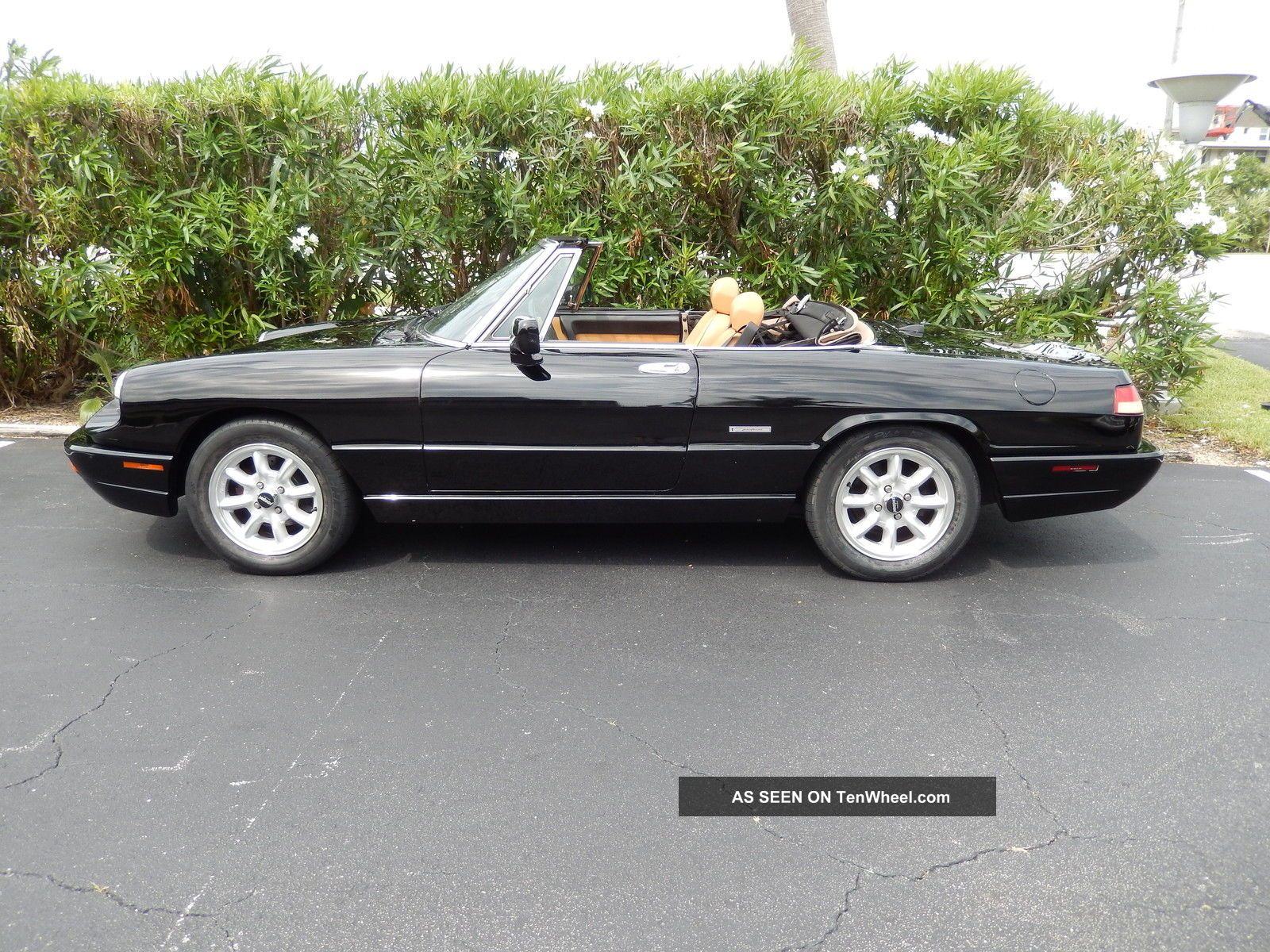 1991 Alfa Romeo Spider Black With Tan And All Accessories Work As They Should. Spider photo