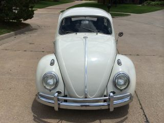 1963 Volkswagen Beetle photo