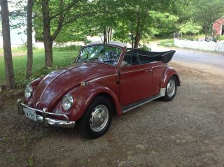 1967 Vw Convertible photo