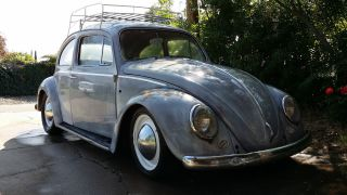 1964 Vw Bug / Beetle photo