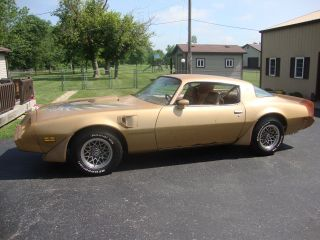1979 Pontiac Firebird Trans Am Coupe 2 - Door 6.  6l photo