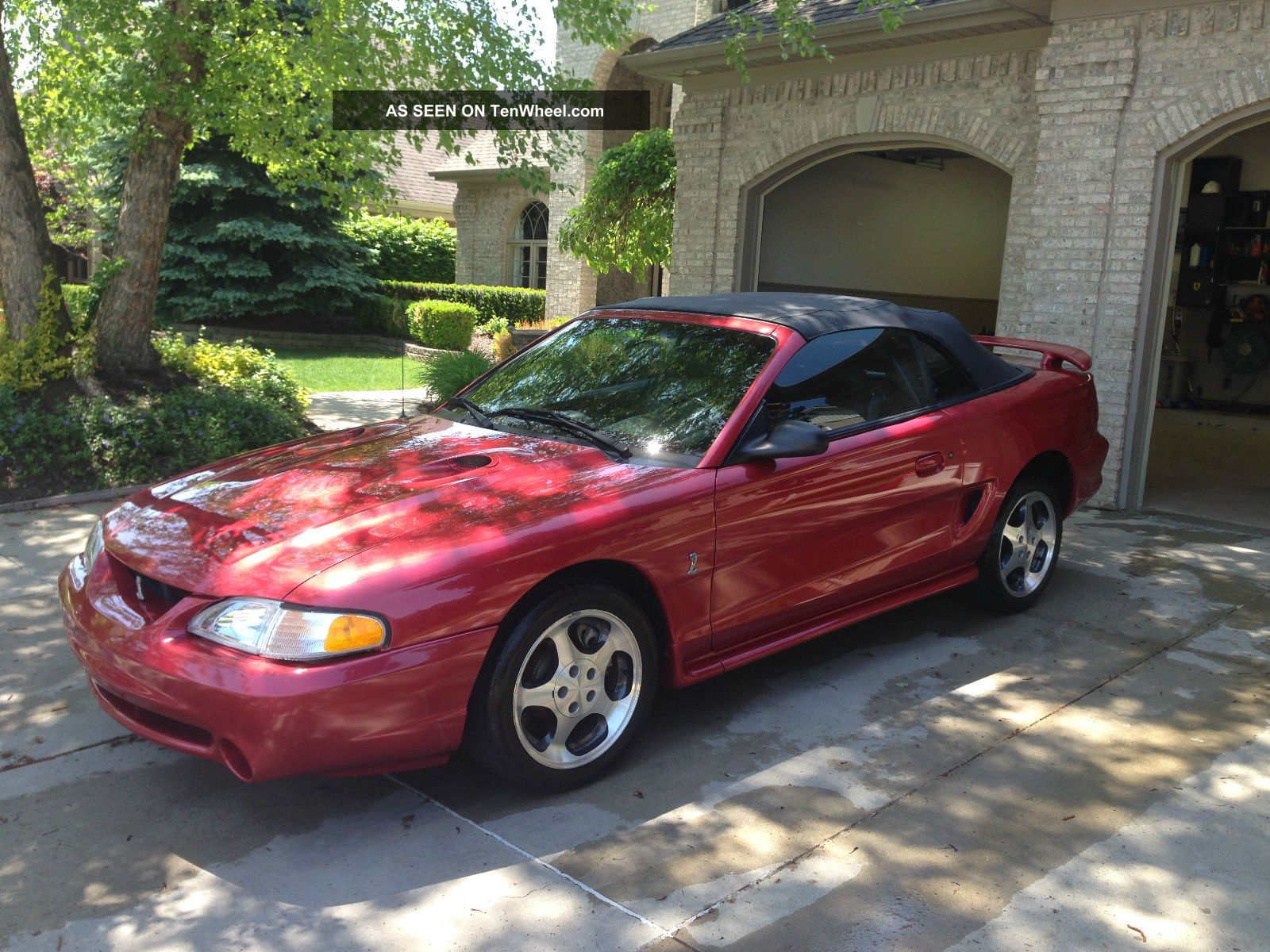 1996 mustang svt cobra convertible. Black Bedroom Furniture Sets. Home Design Ideas