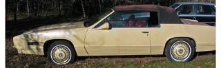 1980 Pierre Cardin Cadillac Eldorado Convertible Ooak photo