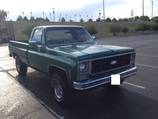 Chevy Pickup 1 / 2 Ton 4x4 1979 photo