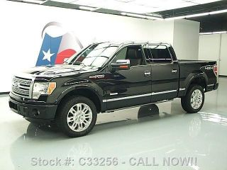 2012 Ford F - 150 Platinum Crew 4x4 Ecoboost Texas Direct Auto photo