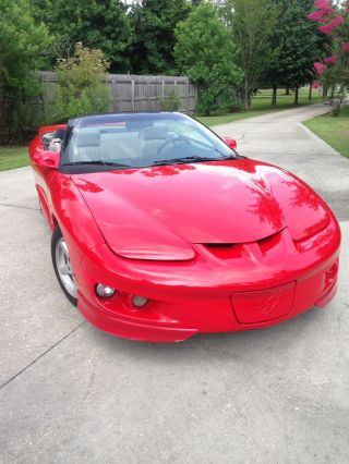 1999 Pontiac Firebird Base Convertible 2 - Door 3.  8l photo