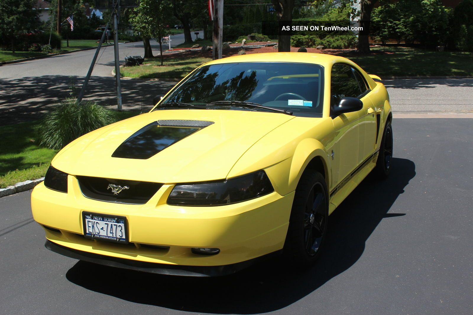 2001 ford mustang base coupe 2 door 3 8l. Black Bedroom Furniture Sets. Home Design Ideas