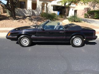 1983 Mustang Glx Convertible 5.  0l 8 Cly,  4 Barrel,  Hurst 4 Speed $16k Rebuild photo