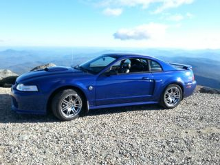 2004 Ford Mustang Gt photo