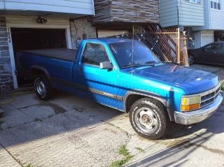 1993 Dodge Dakota Le Standard Cab Pickup 2 - Door 3.  9l photo