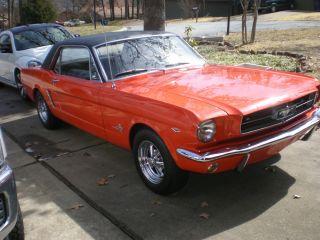 1965 Mustang 50th Anniversary photo