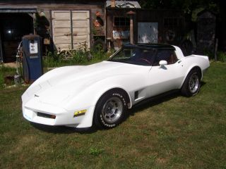 1981 Chevy Corvette photo