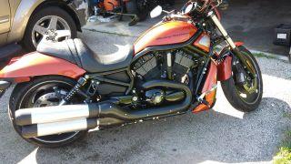 2011 Harley Davidson Night Rod Special Vrsc photo