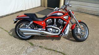2006 Harley Davidson Orange Screaming Eagle V - Rod,  Extremely photo