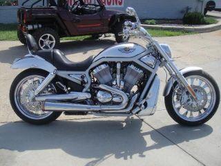 2003 Harley Davidson V - Rod 100th Anniversary photo