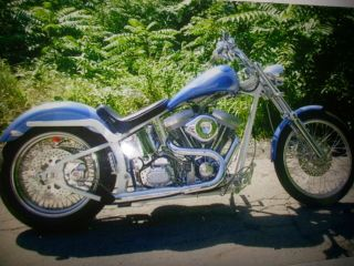 2005 Custom Softail photo
