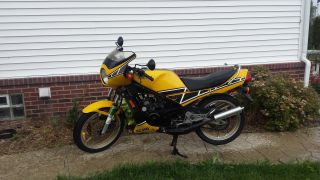 1984 Yamaha Rz350 Kenny Roberts Edition photo