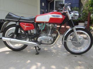 1970 Bevel Ducati 450 Mark 3 Non Desmo photo