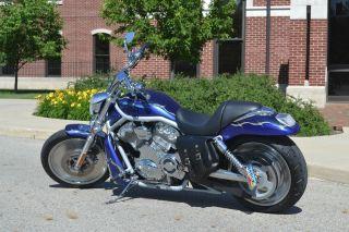 2003 H - D Vrsca V - Rod Harley Davidson photo
