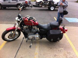 2005 Harley Davidson Hl883l Sportster photo