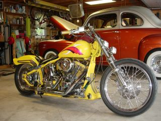 1989 Harley Davidson Custom Softtail photo
