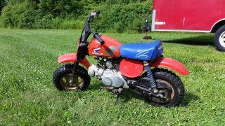 1985 Honda Z50r Minibike Z 50r,  Z50,  Mini Trail,  Monkey Bike Z50 photo