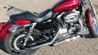 2005 Harley Davidson Sportster 1200 photo